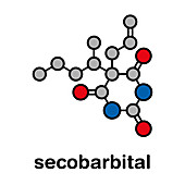 Secobarbital barbiturate sedative molecule, illustration