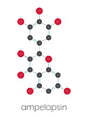 Dihydromyricetin herbal drug molecule, illustration