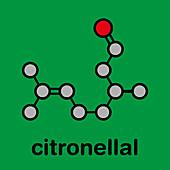 Citronellal citronella oil molecule, illustration