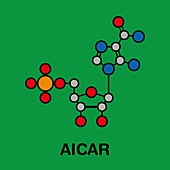 AICAR performance enhancing drug, illustration