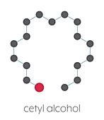 Cetyl alcohol molecule, illustration