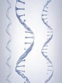 RNA molecules, illustration