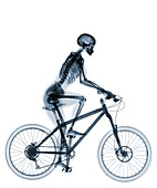 Skeleton riding mountain bike, X-ray
