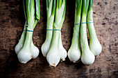 Three Bunches of Spring onions