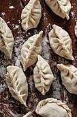Rohe Dumplings (Teigtäschchen, Asien) mit Hühnerfleischfüllung