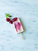 Raspberry swirl yoghurt lollies