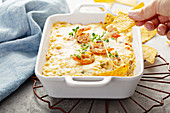Spicy cheese and shrimp dip with tortilla chips