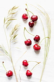 Fresh cherries with meadow grass