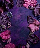 Rahmen aus violetten Blättern auf lila Untergrund