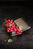 Rote Johannisbeeren in Vintage-Blechdose