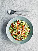 Kohlsalat mit Paprika und Möhren