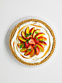 Pimms Pie with nectarines