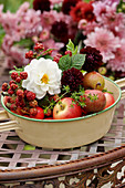 Bowl with apples, dahlias, and unripened blackberries
