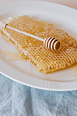 Fresh honeycomb in one big piece