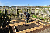 Filling raised beds
