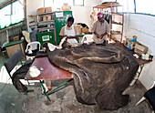 Elephant skin in taxidermy workshop