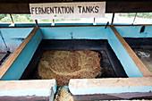 Coffee fermentation tanks, Kenya