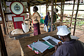 Weighing coffee harvest, Kenya