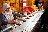 Biscuit production line, Afghanistan