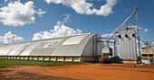 Arable farm, Amazon