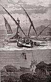 Coral fishing, 19th century illustration