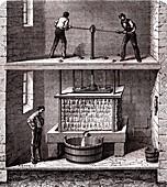 Cider press, 19th century illustration