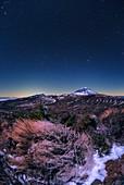 Night sky over Teide volcano, Tenerife