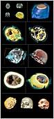 Human head, CT scans
