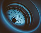 Camera lens diaphragm, macro photograph