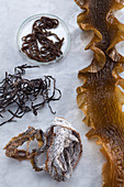 Sea spaghetti (left and top) and kombu (right and bottom)