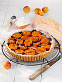Apricot and marzipan tart with blackcurrants
