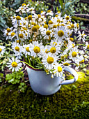Bouquet of chamomile in enamel pot