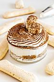 Classic tiramisu dessert and ladyfingers