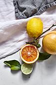 Halbe Blutorange, Limette, Zitrone und Grapefruit