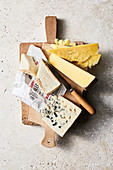 Blue cheese, taleggio and Cheddar