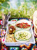 Marinierter Feta in Kräuteröl, Paprikasalat mit Kapern und Pinienkernen, Bohnen-Zucchini-Dip mit Pitachips zum Picknick