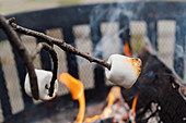 Roasting marshmallows over fire