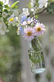 Sträußchen mit Margeriten, Gedenkemein, Gänseblümchen und Butterblume in Flasche aufgehängt
