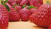 Frische Erdbeeren vor gelbem Hintergrund