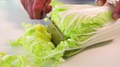 Chef cutting Chinese cabbage