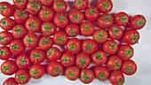Rote reife Tomaten auf weißem Tisch