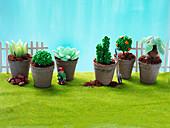'Succulent garden' - kids celebration cakes