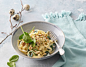 Pasta with spinach and walnut sauce