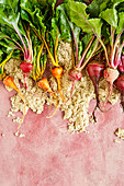 Beetroots and golden beets