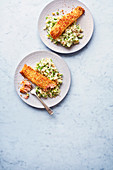 Fish, mash and peas
