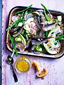 Sardinen mit Fenchel, Avovado, Radieschen und eingemachter Zitrone