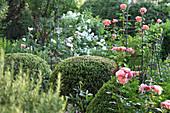 Rosengarten mit Buchs-Kugeln