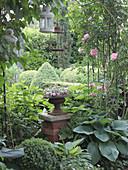 Rosenbogen mit Kletterrose 'Giardina', Säule mit Blumenspindel zwischen Funkien, Buchs und Hortensien