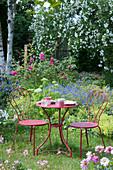 Kleine Sitzgruppe am Beet mit Frauenmantel, Storchschnabel, Rosen und Strauchhortensie
