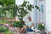Frau mit frisch gepflückten Sauerkirschen neben Kirschbaum 'Maynard' unterpflanzt mit Zweizahn und Veilchen, Dahlie im Korb, Hund Zula